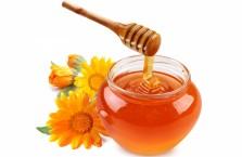 Полезные свойства и вред меда, калорийность