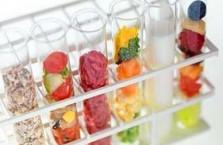 Белки, жиры и углеводы - принципы правильного питания