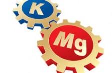 Какие продукты содержат калий и магний