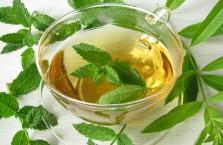 Мятный чай - польза и вред