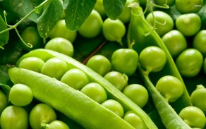 Зеленый горошек - польза и калорийность