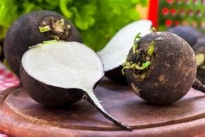 Полезные свойства и калорийность редьки