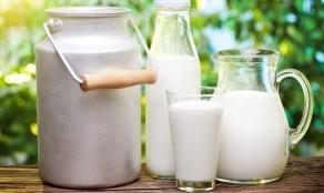 молоко - полезные свойства и вред