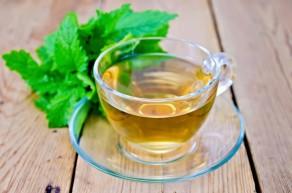 Чай из мелиссы - польза и вред