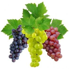 полезные свойства разного винограда