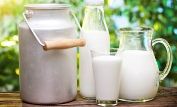 Чем полезно молоко и какой может принести вред?