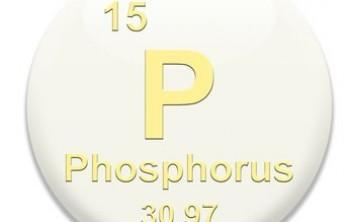 Важность фосфора для человеческого организма