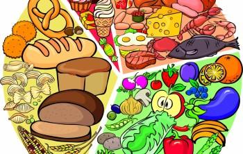 Основы раздельного питания: белки и углеводы