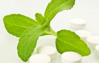 Польза и вред стевии - натурального заменителя сахара