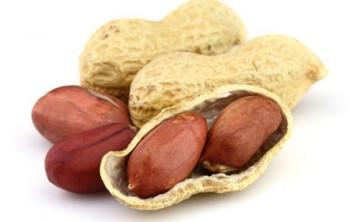 Чем полезен арахис, вред арахиса, калоийность