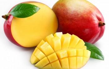Чем полезен манго для организма (+ калорийность)