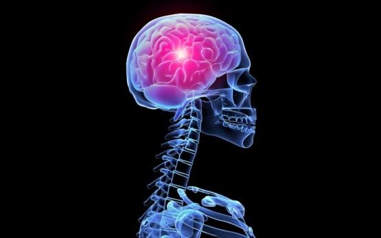 Витамин РР стимулирует работу головного мозга