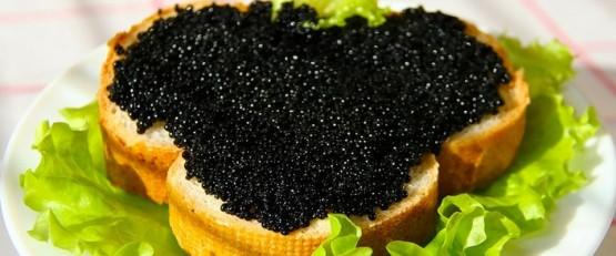 Черная икра поможет при онкологии