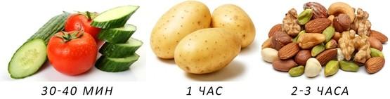 Скорость усвоения овощей, картофеля, орехов